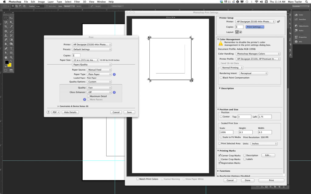 Setting up the print & making the carrier sheet/template.